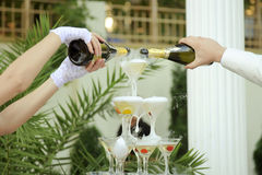 Filling Pyramid of Glasses with Champagne Royalty Free Stock Image