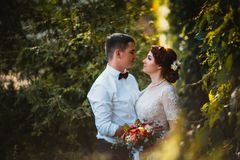 The bride and groom in the foliage of trees Royalty Free Stock Image