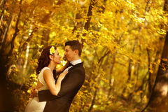 Bride and groom in a forest Stock Images