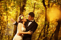 Bride and groom in a forest Royalty Free Stock Photo