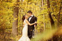 Bride and groom in a forest Stock Photos