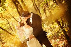 Bride and groom in a forest Royalty Free Stock Photography