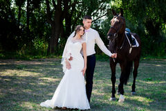 Bride and groom in forest with horses. Wedding couple  .Beautiful    portrait in nature Royalty Free Stock Photography