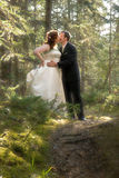 Bride and Groom in Forest with Soft Focus. A bride and groom kiss tenderly in a fairy-tale forest. Soft-focus technique applied to photography. Faces are in Stock Photo