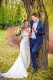 Bride groom garden tree Royalty Free Stock Photos