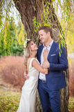 Bride groom garden tree Stock Photography