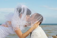 Bride and groom gentle kiss Stock Images