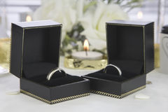 Bride and Groom Gold wedding rings Royalty Free Stock Images