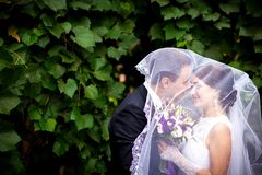 Bride and groom grapes Stock Photography