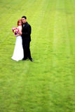Bride and Groom on Grass Royalty Free Stock Image