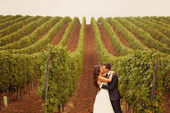 Bride and groom at a green cold rainy day vineyard Stock Images