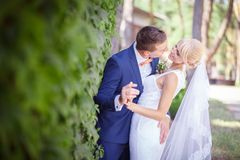 Bride and groom, green grapes Royalty Free Stock Photography