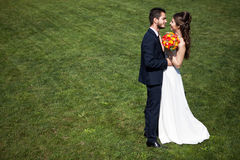 Bride and groom on green grass background Stock Photos