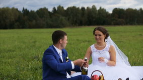 Bride and groom on a green meadow in summer day. Bridegroom opens a bottle of champagne.Bride and groom drinking champagne on a green meadow, the groom kisses stock video
