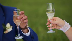 Bride and groom on a green meadow in summer day. Bride and groom with champagne glasses clink.Bride and groom drinking champagne on a green meadow, the groom stock video footage