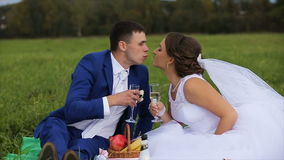 Bride and groom on a green meadow in summer day. Bride and groom with champagne glasses clink.Bride and groom drinking champagne on a green meadow, the groom stock footage