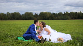Bride and groom on a green meadow in summer day. Bride and groom drinking champagne on a green meadow, the groom kisses the bride.Picnic newlyweds on green field stock video