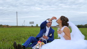 Bride and groom on a green meadow in summer day. Bride sings bride grapes and treats its fruits.Picnic newlyweds on green field meadow.Loving wedding couple stock footage