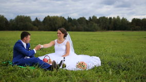 Bride and groom on a green meadow in summer day. Bride and groom are sitting on a green field, meadow, the groom kisses the bride's hand.Picnic newlyweds on stock video