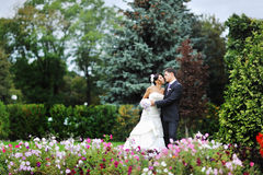 Bride and groom in a green park Stock Photography
