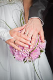 Bride and groom hands Stock Photography
