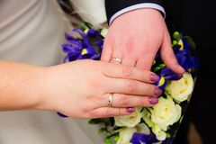 Bride and groom hands with wedding rings. Bride and groom hands with gold wedding rings Royalty Free Stock Images