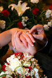 Bride and Groom Hands with Rings 2. Bride and Groom Hands with Rings and flowers after wedding Stock Image