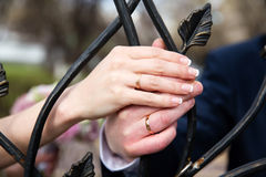 Bride and groom hands with rings Stock Photos