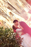 Bride and groom. Happy kissing Stock Image