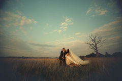 Bride and groom have fun on the autumn field Stock Photo