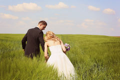 Bride and groom having fun on the fields Stock Images