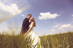 Bride and groom having fun on the fields Royalty Free Stock Photos