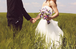 Bride and groom having fun on the fields Royalty Free Stock Image