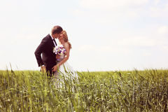 Bride and groom having fun on the fields Stock Photography