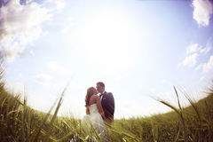 Bride and groom having fun on the fields Royalty Free Stock Photography
