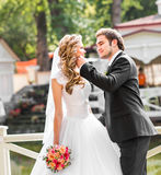Bride and groom having a romantic moment on their wedding day Royalty Free Stock Photography