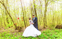 Bride and groom having a romantic moment on their wedding day outdoor Stock Image