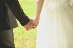 The bride and groom hold hands and walk. Loving couple clasped hands, rear view. royalty free stock photography