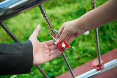 The bride and groom hold lock. The bride and groom hold together their alliance lock Stock Image
