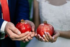 The bride and groom hold garnets in their hands. Wedding rings. close-up. The bride and groom hold pomegranates in their hands. Wedding rings. close-up Royalty Free Stock Images