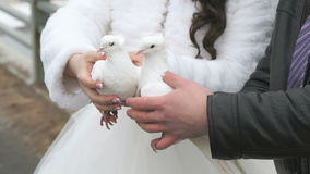 Bride and groom hold two white doves in hands. Bride and groom standing on bridge hold two white doves in hands. Wedding tradition stock video