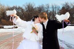 Bride and groom hold white doves and kiss Royalty Free Stock Photo
