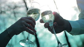 Bride and groom are holding champagne glasses. Bride and groom are holding champagne  glasses video HD stock footage