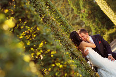 Bride and groom holding each other Royalty Free Stock Photos