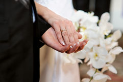 Bride and groom holding each other's hands Royalty Free Stock Image