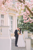 Bride and groom holding each other on stairs under blossoming magnolia tree. Vintage building at background Stock Photo