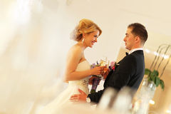 Bride and groom holding glasses of champagne. Sunny lovely day Royalty Free Stock Photography