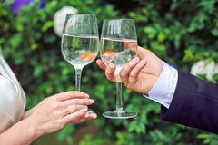 Bride and groom holding glasses with goldfish Royalty Free Stock Image
