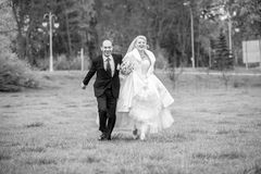 Bride and groom holding hand and running at meadow Royalty Free Stock Photo