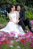 Bride and groom holding hand and walk in the garden Royalty Free Stock Images
